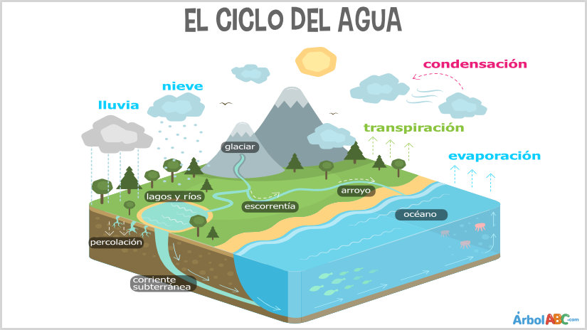 Ciclo_del_agua.jpg