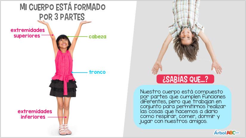 extremidades inferiores del cuerpo humano para niños
